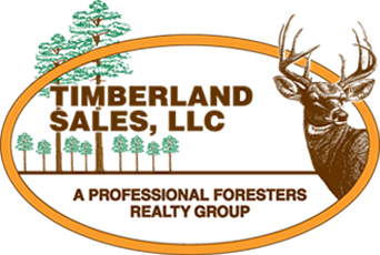 Forestry consulting and real estate firms – Brandon, Starkville, and Monticello |  Timberland Sales, LLC
